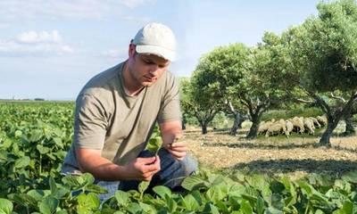 Μέτρα στήριξης εγκατάστασης Νέων Αγροτών στον Δήμο Γορτυνίας