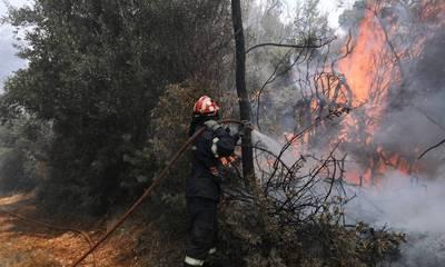 Φωτιές σε εξέλιξη σε Αρκαδία και Λακωνία