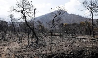 Λαϊκή Συσπείρωση Πελ/νήσου: Δεν ευθύνεται μόνο η ερήμωση της υπαίθρου για τις πυρκαγιές