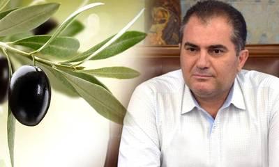 Βασιλόπουλος: Επιστολή προς την Ε.Ε. για την ΠΟΠ Ελιά Καλαμάτας