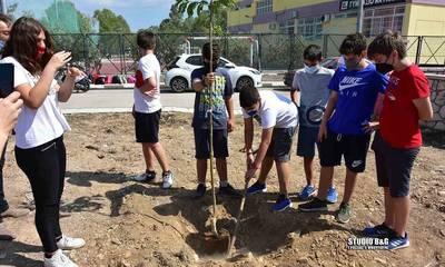 «Πράσινος Ιούνιος»: Περιβαλλοντικές δράσεις του Δήμου Ναυπλιέων (photos)