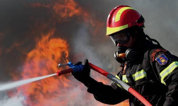 Σε εξέλιξη φωτιά στο Κρυόνερο Μεγαλόπολης