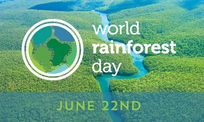 22 Ιουνίου: Παγκόσμια Ημέρα Τροπικών Δασών