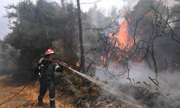Άνυδρο Τριφυλίας: Υπό μερικό έλεγχο η φωτιά