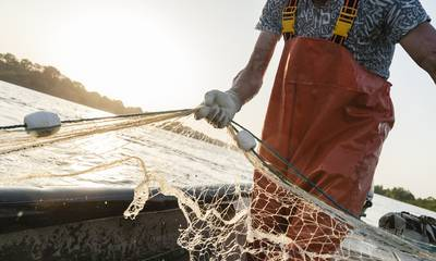 Γενναία μέτρα για την επανεκκίνηση της Οικονομίας και τους Αγρότες, Κτηνοτρόφους, Αλιείς