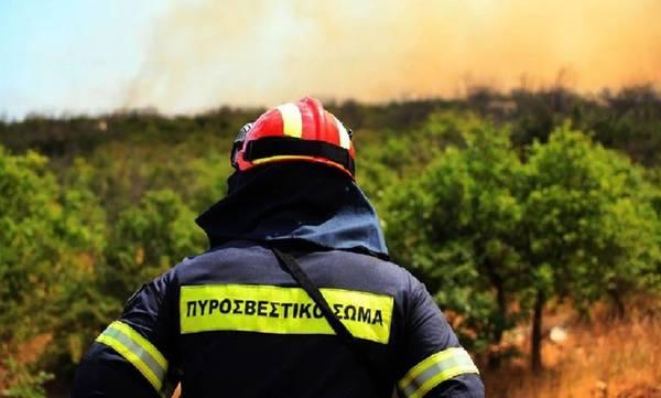 Υψηλός ο κίνδυνος πυρκαγιάς σε πολλές περιοχές της Πελοποννήσου