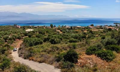 Πωλείται οικόπεδο 6000τ.μ. με υπέροχη θέα στην Επισκοπή Μεσσηνίας