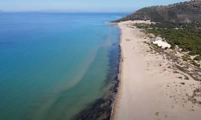 Καλόγρια: Η παραδεισένια – εξωτική παραλία της Αχαΐας
