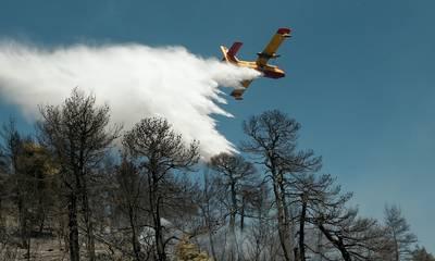 Συναγερμός στην Πυροσβεστική: Φωτιές σε Μεγαλόπολη και Αιγιαλεία
