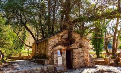 Το εκκλησάκι στην Πελοπόννησο με τα 17 δέντραστη σκεπήπου μπήκε στο Γκίνες
