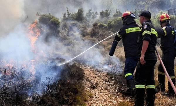 Φωτιά στη Χιόνα Αχαΐας - Καίειαγροτοδασική έκταση