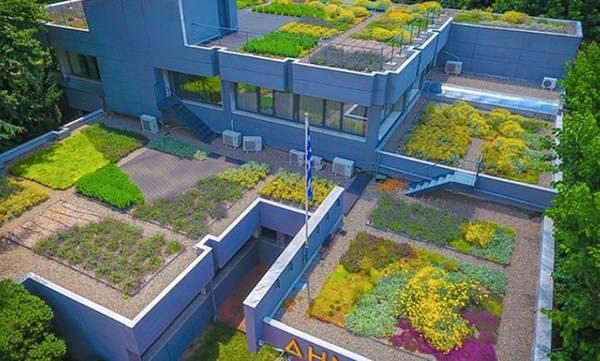 Η «πράσινη στέγη» του Δημαρχείου της Έδεσσας, παράδειγμα για τον Δήμο Σπάρτης