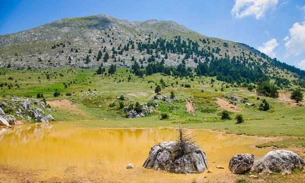 Πήγαινε να δροσιστείς στον Πάρνωνα παρέα με τον Ορειβατικό Σύλλογο Σπάρτης!