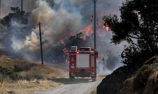 Πολύ υψηλός ο κίνδυνος πυρκαγιάς σήμερα στην Πελοπόννησο