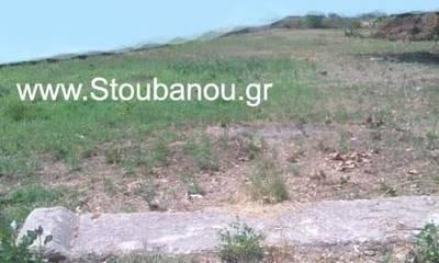 Πωλείται οικόπεδο 4.811 τ.μ. στη Ροβιάτα Αμαλιάδας