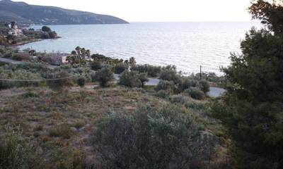 Πωλείται παραθαλάσσιο οικόπεδο 2.200 τμ στη Σάντοβα Μεσσηνία
