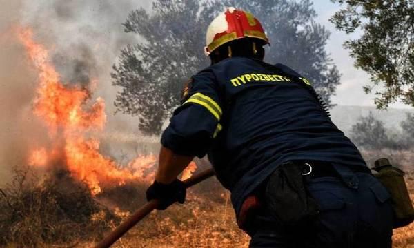 Φωτιά στο Καλέντζι Κορινθίας