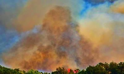 Αργολίδα: Μάχη με τις φλόγες στο Αραχναίο - Εκκενώθηκε το χωριό Γκάτζια (photos)
