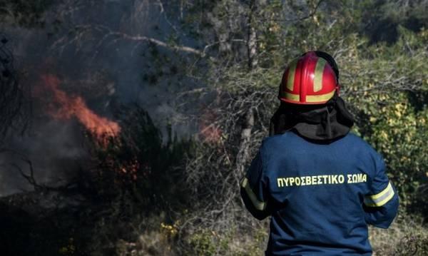 Αιγιάλεια: Οριοθετημένη η φωτιά στην περιοχή Ζήρεια