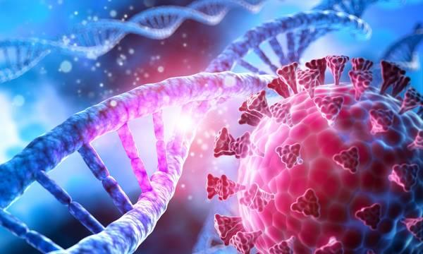 Γιατί είναι τόσο μεταδοτική η Μετάλλαξη Δέλτα – Πώς προσβάλει ο κορονοϊός τα ανθρώπινα κύτταρα