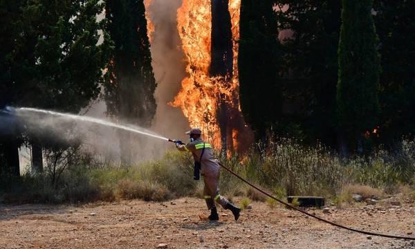 Νέα φωτιά κοντά στην Πάτρα  - Εντολή εκκένωσης