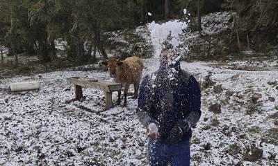 Τρελάθηκε ο καιρός: Χιόνισε στη Βραζιλία μετά από 64 χρόνια! (photos - videos)