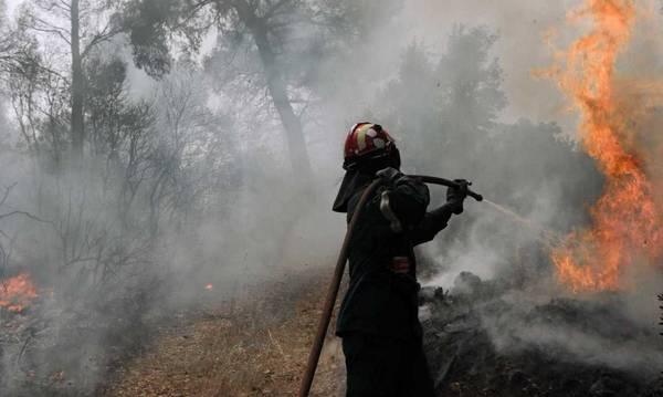 Αχαΐα: Νέα φωτιά στη Ζήρια Αιγιαλείας  – Εκκενώνεται οικισμός