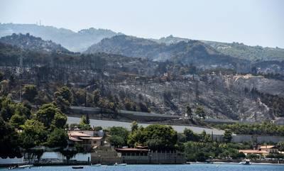 Φωτιά στην Αχαΐα: Στάχτη πάνω από 3.000 στρέμματα καμμένα από την πυρκαγιά