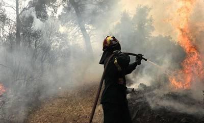 Πάτρα: Έκτακτο βοήθημα από τον δήμο στους πληγέντες από τις πυρκαγιές!