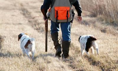 Κυνηγοί Λακωνίας: Δεν έχουν οι κυνηγοί της χώρας μας, κοφτήρια νομισμάτων!
