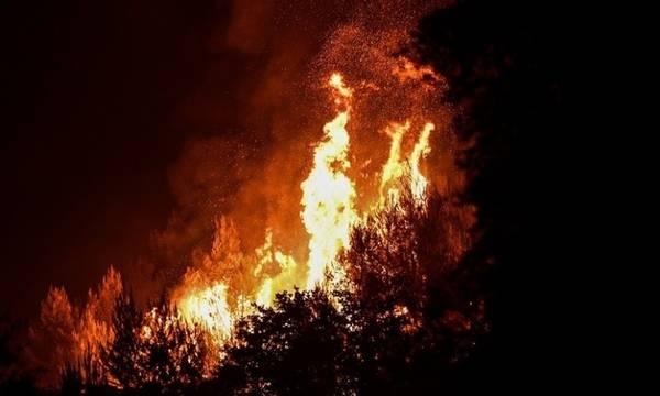 Βασιλίτσι: Σε εξέλιξη η φωτιά - Επέστρεψαν στα σπίτια τους οι κάτοικοι της κοινότητας