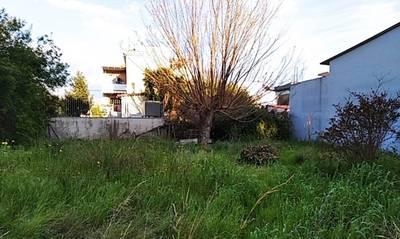 Πωλείται οικόπεδο 288,70 τ.μ. στην Αμαλιάδα