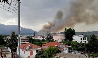 Πυρκαγιά μέσα στη Μαγούλα Σπάρτης