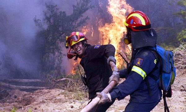 Υπο έλεγχο η φωτιά στη Μαγούλα Σπάρτης