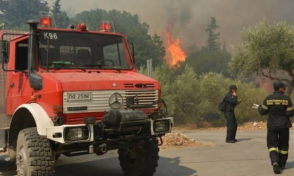 Πελοπόννησος: Παραμένει πολύ υψηλός ο κίνδυνος πυρκαγιάς
