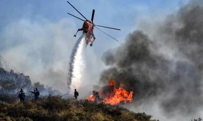 Απειλούν και σήμερα οι φωτιές σε Λακωνία και Μεσσηνία!