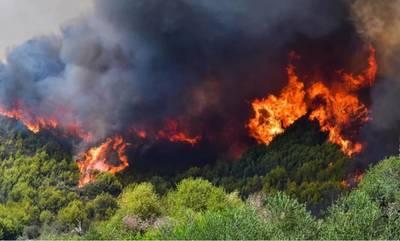 Φωτιά στην Αρχαία Ολυμπία: Εντολή για εκκένωση - Μήνυμα από το 112