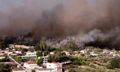 Φωτιά στην Αρχαία Ολυμπία: Αναζωπυρώσεις αντιμετωπίζει η Πυροσβεστική