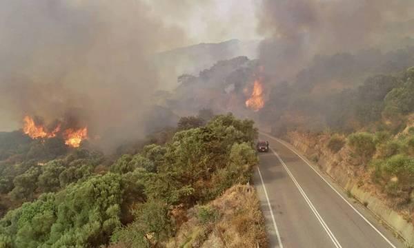 Παρεμβάσεις και θέσεις των Αρχών για τις φωτιές στην Πελοπόννησο!
