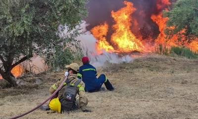 Φωτιά στην Αρχαία Ολυμπία: Εκκενώνονται ακόμη οκτώ κοινότητες