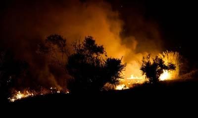 Αναστασόπουλος: «Εξαιρετικά δύσκολη η κατάσταση με τις φωτιές στη Μεσσηνία»