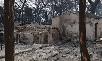 Συνελήφθη ύποπτος για εμπρησμό στην Αχαΐα - Εκτελούσε εργασίες, ξέσπασε φωτιά και έφυγε…
