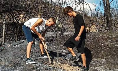 Παιδιά φύτεψαν το πρώτο δένδρο στην καμένη Ολυμπία! Όλη η Ελλάδα κάνει like!
