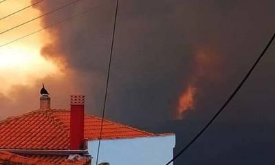 Η Γορτυνία φλέγεται! «Άφησαν την φωτιά να κάψει τα σπίτια μας!»