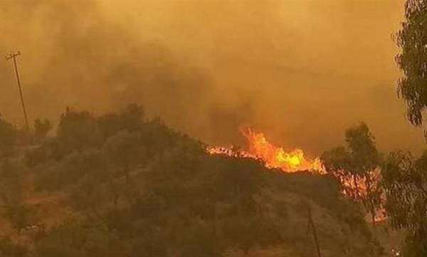 Σε εξέλιξη η φωτιά στην Ανατολική Μάνη - «Μάχη» με τις αναζωπυρώσεις (video)