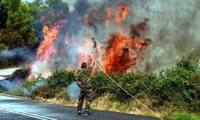 Μαυρογιαλούροι και γαλονάδες καίνε την Ελλάδα! (video)