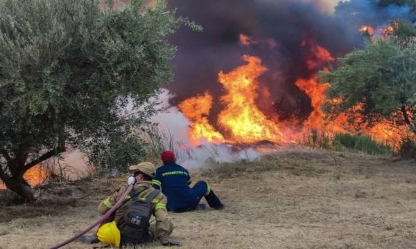 Η ενημέρωση της Πυροσβεστικής Υπηρεσίας για τις πυρκαγιές στην Πελοπόννησο