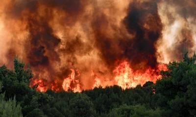 Πυρκαγιές στην Πελοπόννησο – Η γνώμη σου!
