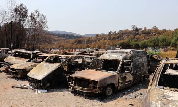 Ανατολική Μάνη: Πώς δηλώνετε τις ζημιές από την καταστροφική πυρκαγιά