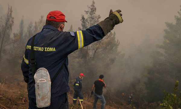 Μάνη: Σε 6 εστίες επιμένει η καταστροφική πυρκαγιά!